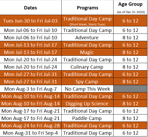 day camp chart 2020.png